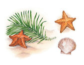 Watercolor illustrations of shells and starfish on tropical beach — Stock Photo