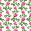 Watercolor pattern with rose illustration — Stock Photo #34780513