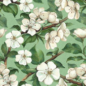 Pattern with watercolor apple flowers — Stock Photo