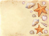 Watercolor background with shells and sea star illustrations — Stock Photo