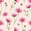 Cosmos flowers illustration. Watercolor seamless pattern — Stock Photo #41335057