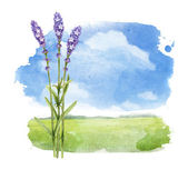 Watercolor illustration of a summer landscape — Stock Photo