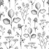 Wild flowers drawing. Seamless pattern — Stock Photo
