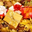 Royalty-Free Stock Photo: Group of gift box in fall foliage.