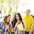 Group student  outdoor. - Foto Stock
