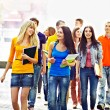 Group student outdoor. — Stock Photo #13336447