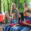 Royalty-Free Stock Векторное изображение: Group of studing.