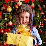 niño con caja de regalo cerca de árbol de Navidad — Foto de Stock   #14621101