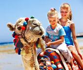 Los turistas montando camellos en la playa de egipto. — Foto de Stock