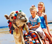 Tourists riding camel on the beach of Egypt. — Foto de Stock