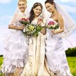 Group bride summer outdoor.or. — Stock Photo