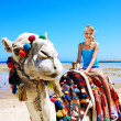 Tourists riding camel  on the beach of  Egypt. — Stock Photo