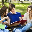 Group student with notebook outdoor. — Foto de Stock