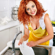 Woman washing dishes at kitchen. — Stock Photo #29032475