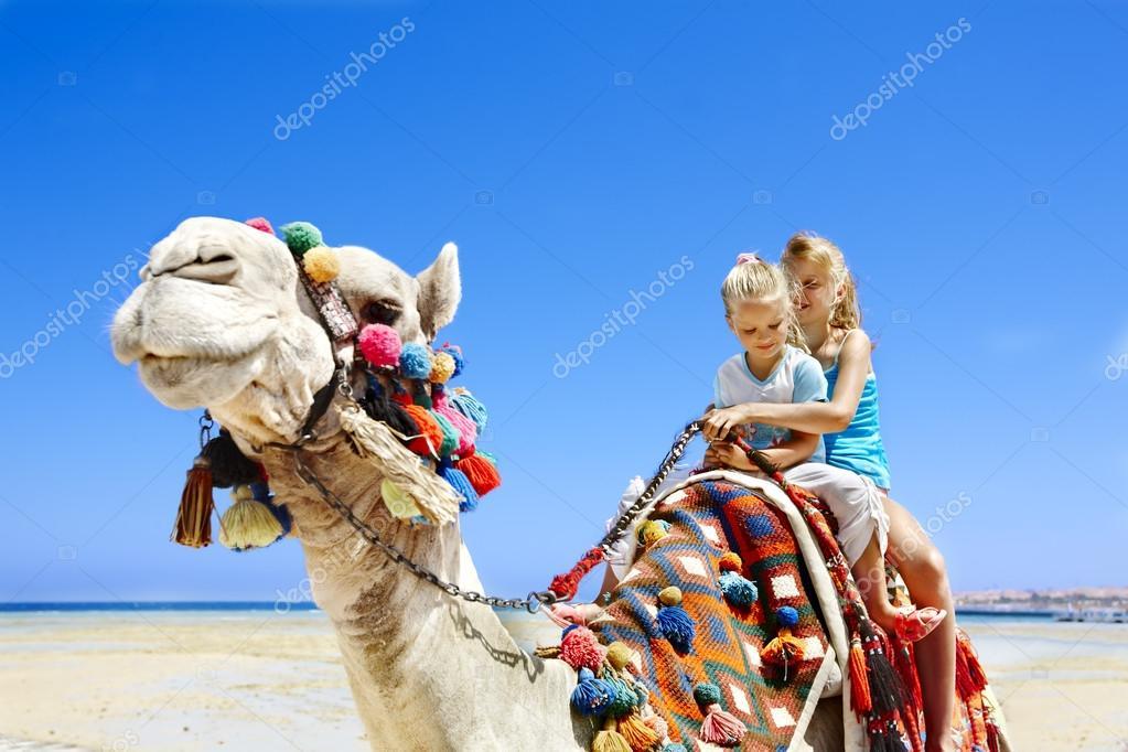Фото верблюда скачать