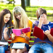 Group student with notebook on bench outdoor. — Foto de Stock