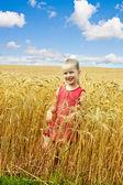 Niño en campo de trigo. — Foto de Stock