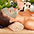 Stock Photo: Woman having clay facial mask apply by beautician.