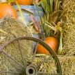 Fall harvest display — Stock Photo #1162248