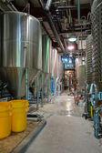 Bira brewery — Stok fotoğraf