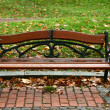 Bench in autumn park — Stock Photo #16991469