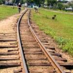 kolejowy — Zdjęcie stockowe #1719073