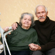 Happy senior couple — Stock Photo #18499701