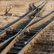 Railway tracks — Stock Photo #22677485