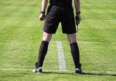 Referee — Stock Photo