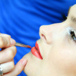 Make up — Stock Photo #28968549