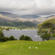 Overlook of Coniston Water in Lake District — Lizenzfreies Foto