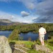 View over Tarn Hows in English Lake District — Stock Photo