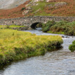 stone bridge over river by wastwater — Stock Photo #13168742