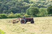 古色古香的大卫 · 布朗拖拉机和打谷机 — 图库照片