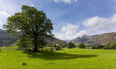 Langdale pikes im lake district — Stockfoto