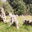 Rollright Stones stone circle in Cotswolds — Stock Photo #13473819