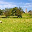 Church St James across meadow in Chipping Campden — Lizenzfreies Foto