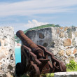 Old cannon rusting on St Martin Caribbean — Stock Photo #14660881