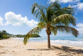 Friar's bay on St Martin in Caribbean — Stock Photo