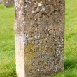 Gravestone for Nancy Mitford author — Stockfoto