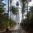 Cape Florida lighthouse in Bill Baggs — Stock fotografie