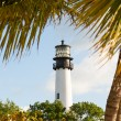 Cape Florida lighthouse in Bill Baggs — Stok fotoğraf