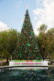 Large decorated external christmas tree — Foto Stock