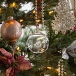 Glass globe on christmas tree detail — Stock Photo