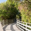 Florida Keys raised walkway — Stock Photo