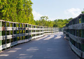 Florida Keys raised walkway — Stockfoto