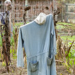 Stock Photo: Old scarecrow in vegetable garden