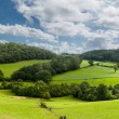 Panorama of welsh countryside — Stock Photo