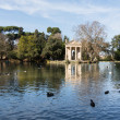 Giardino del Lago in Rome Italy Lake - Stock Photo