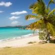 Beach scene St Thomas USVI — Stock Photo #21386189